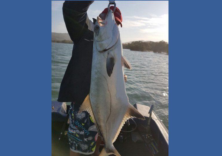 estuaryfish